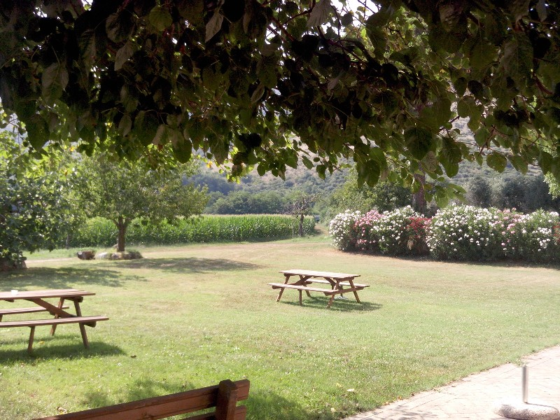 Davis Vantage Vue >> Triflisco (CE) - Forum Campanialive