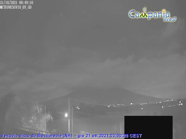 Vista del Vesuvio da Boscoreale