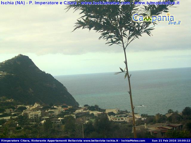 Forio webcam - Citara webcam, Campania, Naples